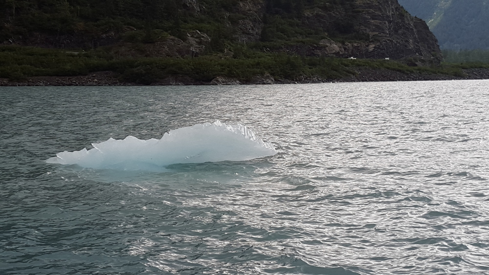 Alaskan iceberg in a lake