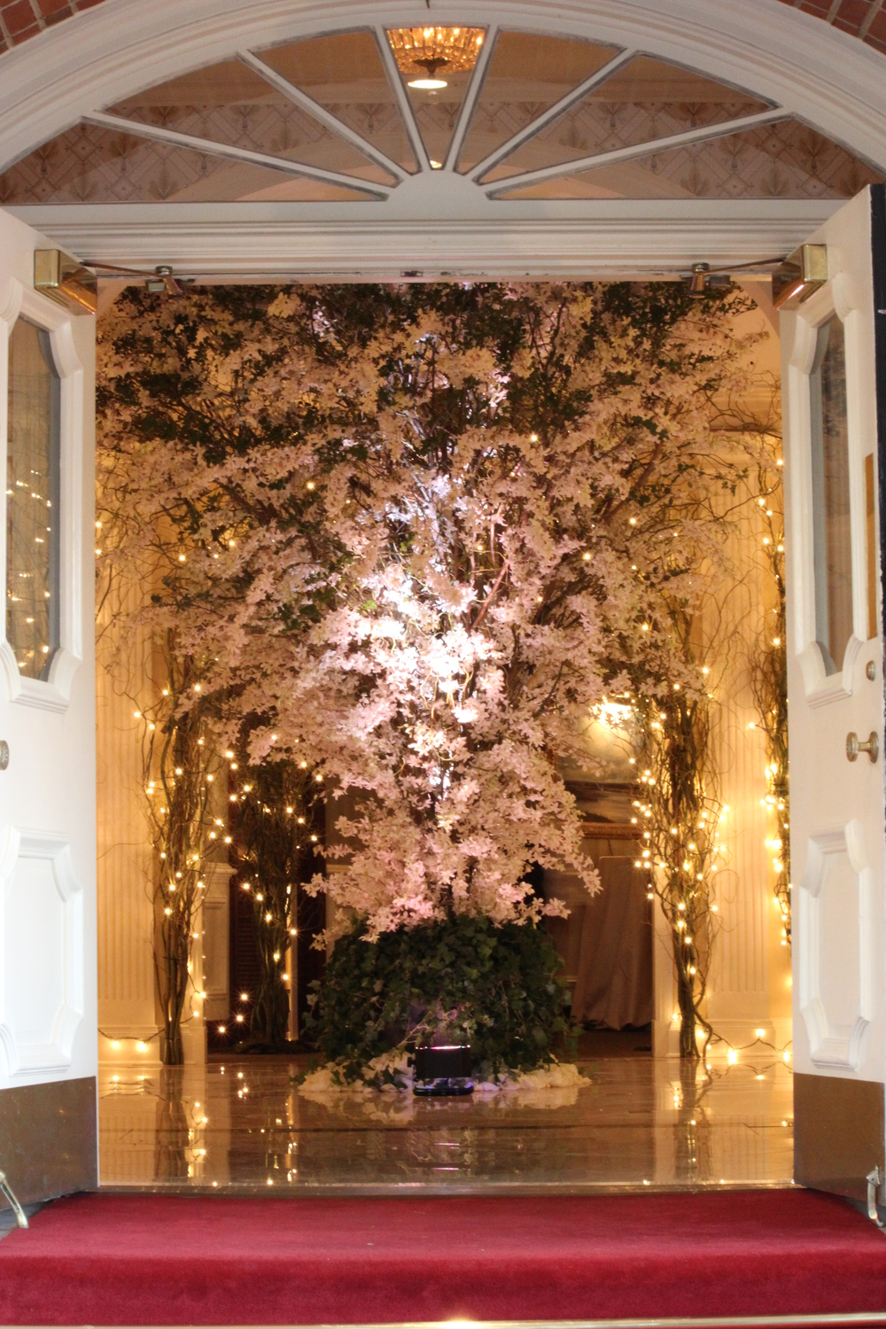 An Explosion of white Dendrobium Orchids in the entry of the Memphis Country Club