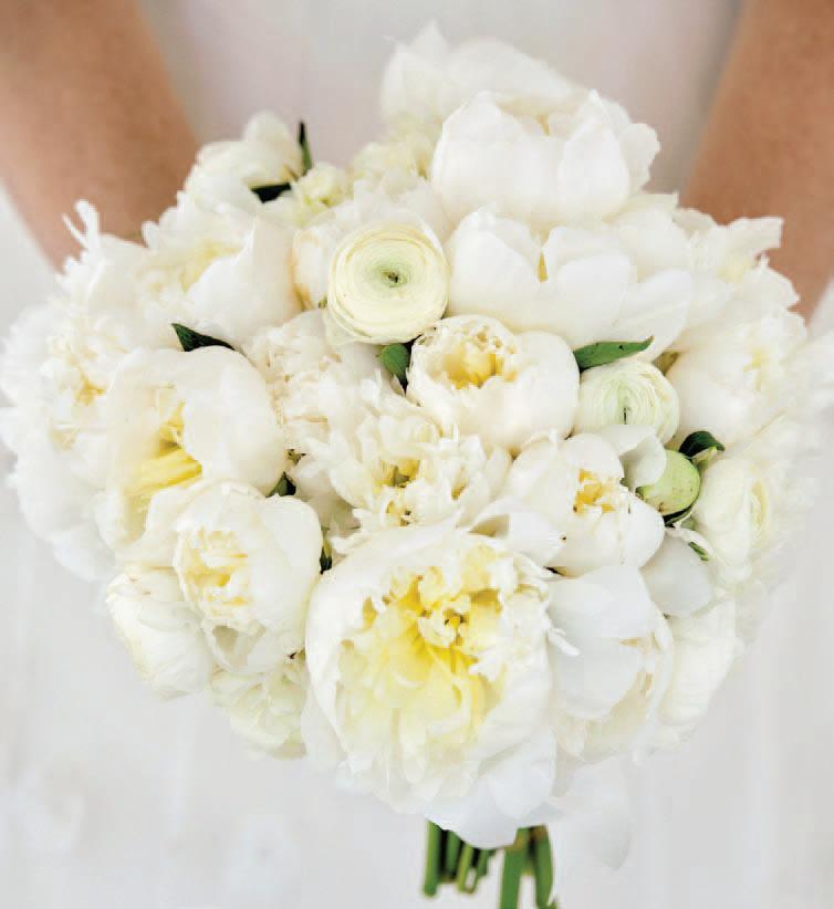 Bouquet of Peonies, Tulips, and Ranunculus,