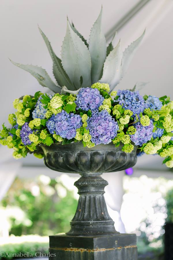 The Royal Wedding at The Memphis Hunt and Polo Club - Agave, Hydrangea and Viburnum. Photo Courtesy of Annabella Charles Photography