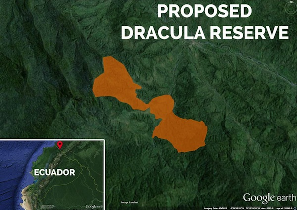 Dracula Orchid Reserve