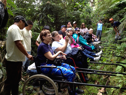 Accessible jungle exploration for all