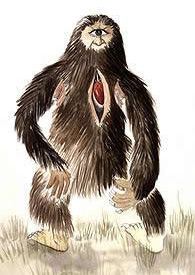 Mapinguari Legend