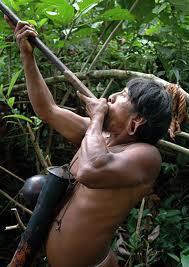 Amazonian Weapon
