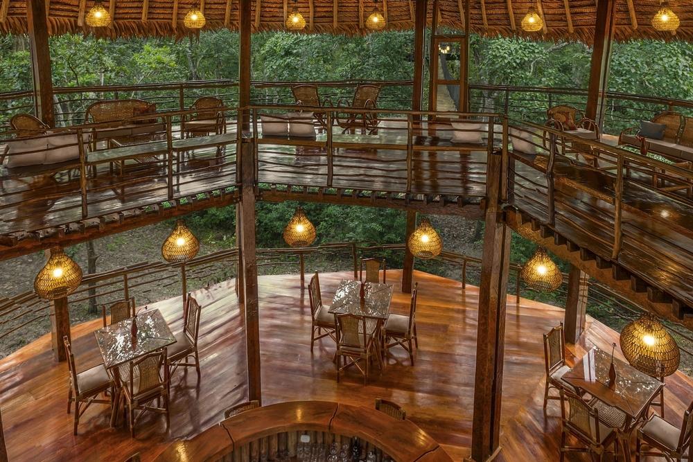 Treehouse_Comodore_interior_condensed.jpg