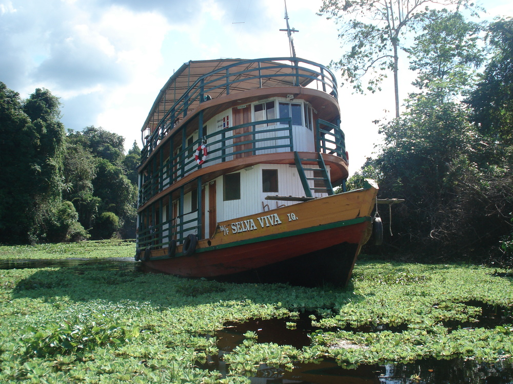 The Selva Viva has a Wide Array of Exciting Itineraries in the Peruvian Amazon