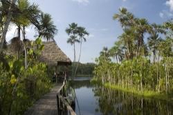 amazon cruise testimonial