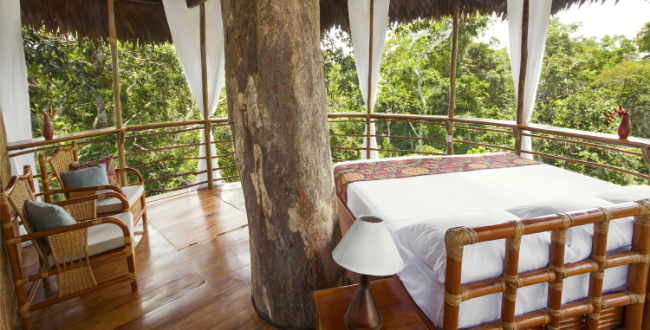 honeymoon treehouse lodge