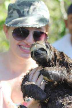 three-toed sloth cruise testimonial