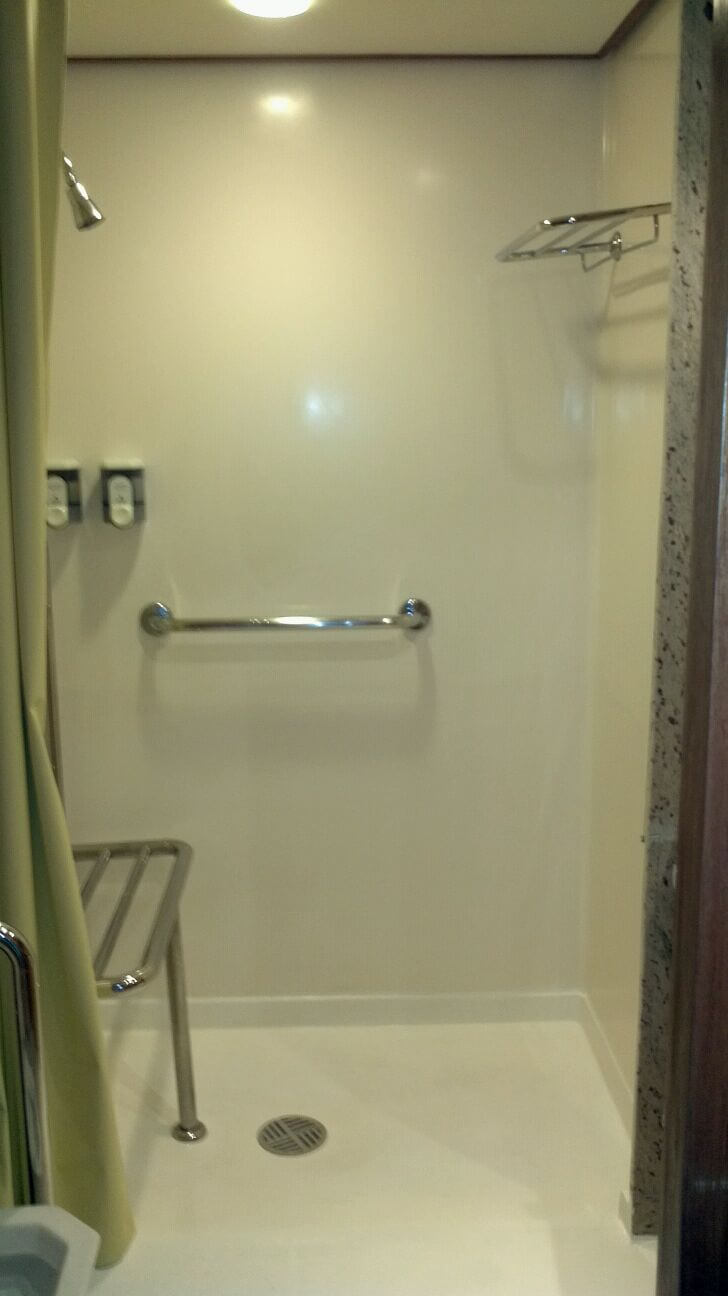 Wheelchair accessible cabin bathroom