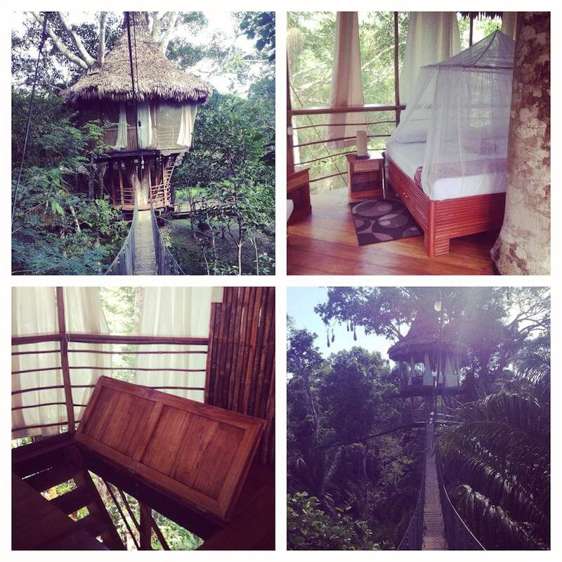 The different parts of the Treehouse Lodge