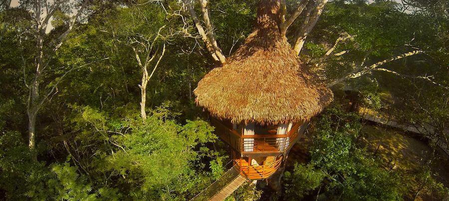 Treehouse Lodge Peru Bungalow 1