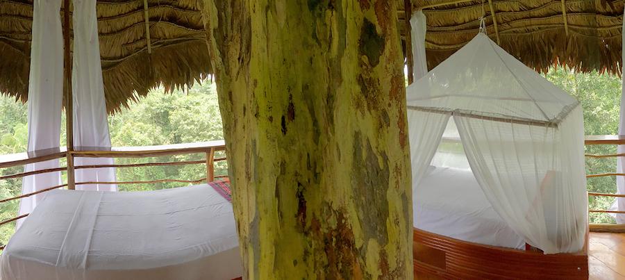 Treehouse Lodge Peru Bungalow 6