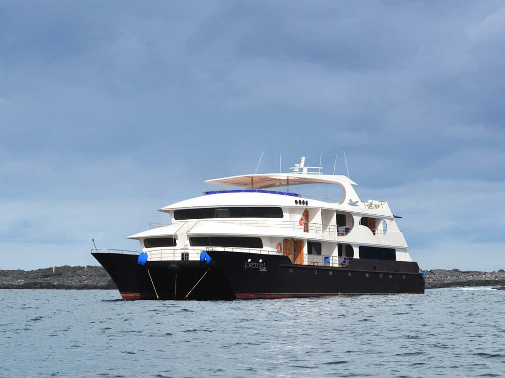 Petrel luxury cruise