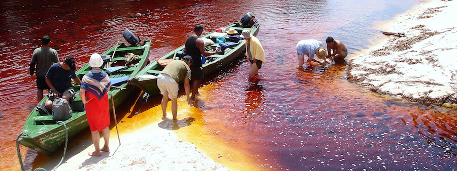 The tannin-stained waters of the Rio Negro