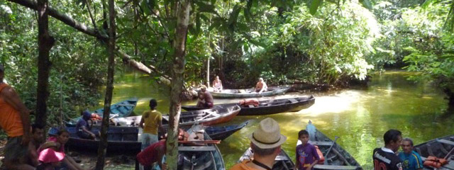 Canoe exploration of the Amazon