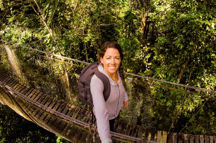 canopy bridge in the amazon