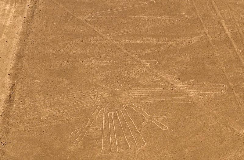 Heron Nazca Lines
