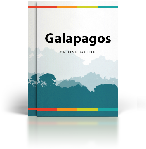 Rainforest Cruises' Free Galapagos Cruise Guide