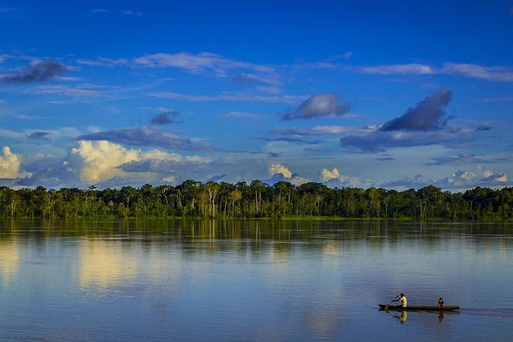 The Beautiful Amazon.