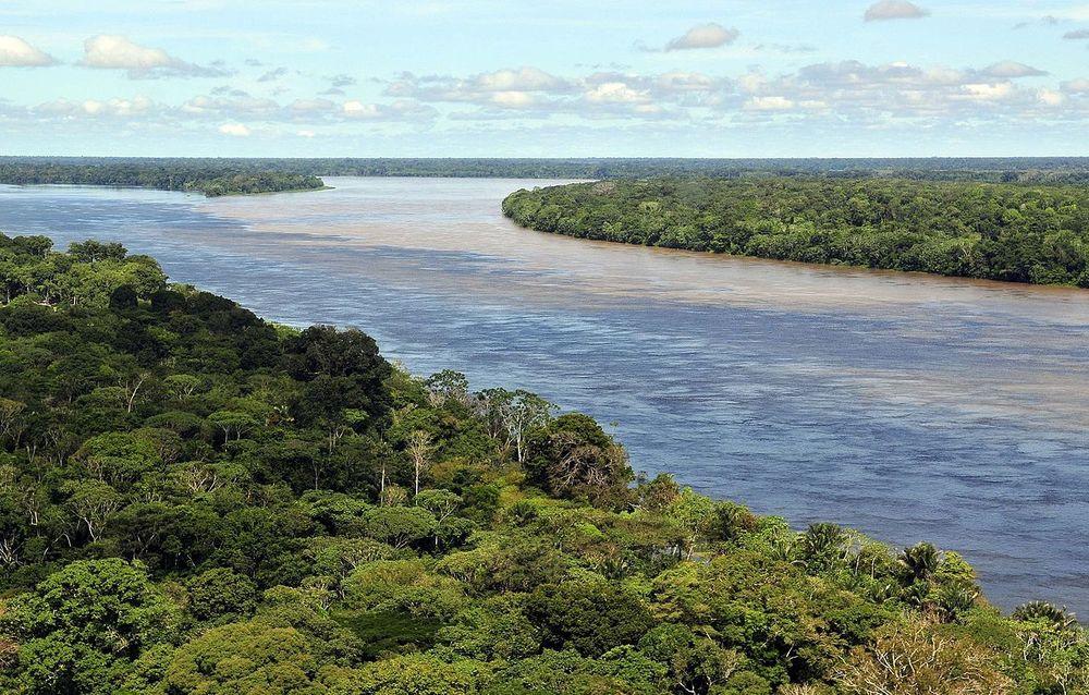 Amazon River near Manaus, Brazil. Ph. Neil Palmer