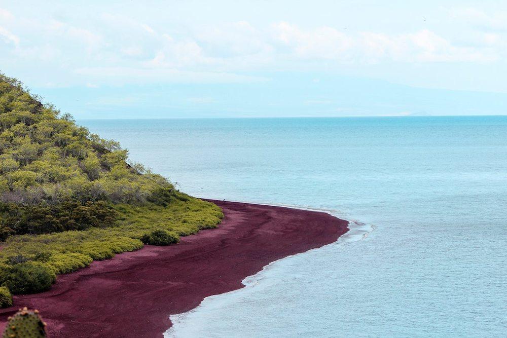 Rabida Island Galapagos