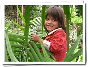 Selva Viva Community Projects
