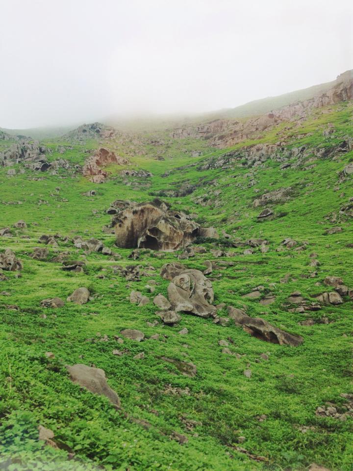 Lomas de Lucumo Green Landscape