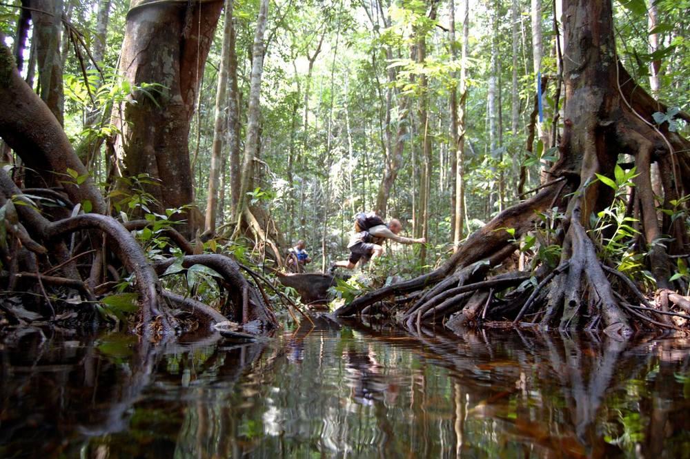 Jungle Marathon through the swamps (Ph. junglemarathon.com)