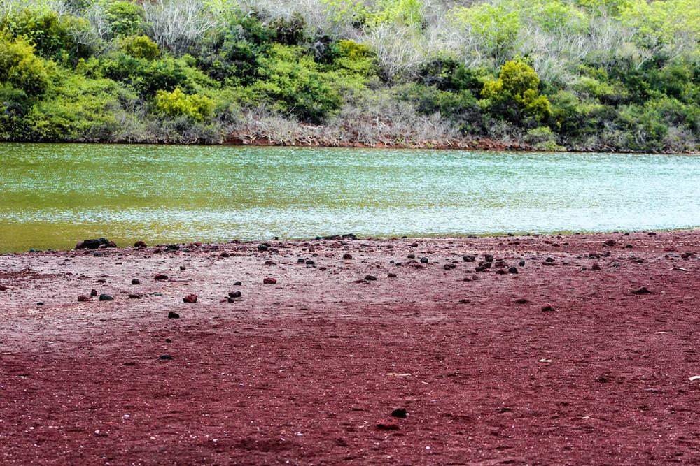 Galapagos Rabida Island