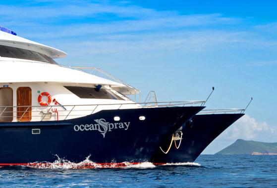 The beautiful Ocean Spray catamaran.