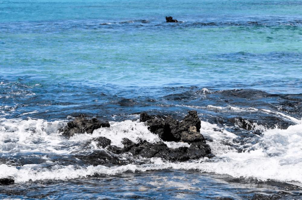 Galapagos Ocean