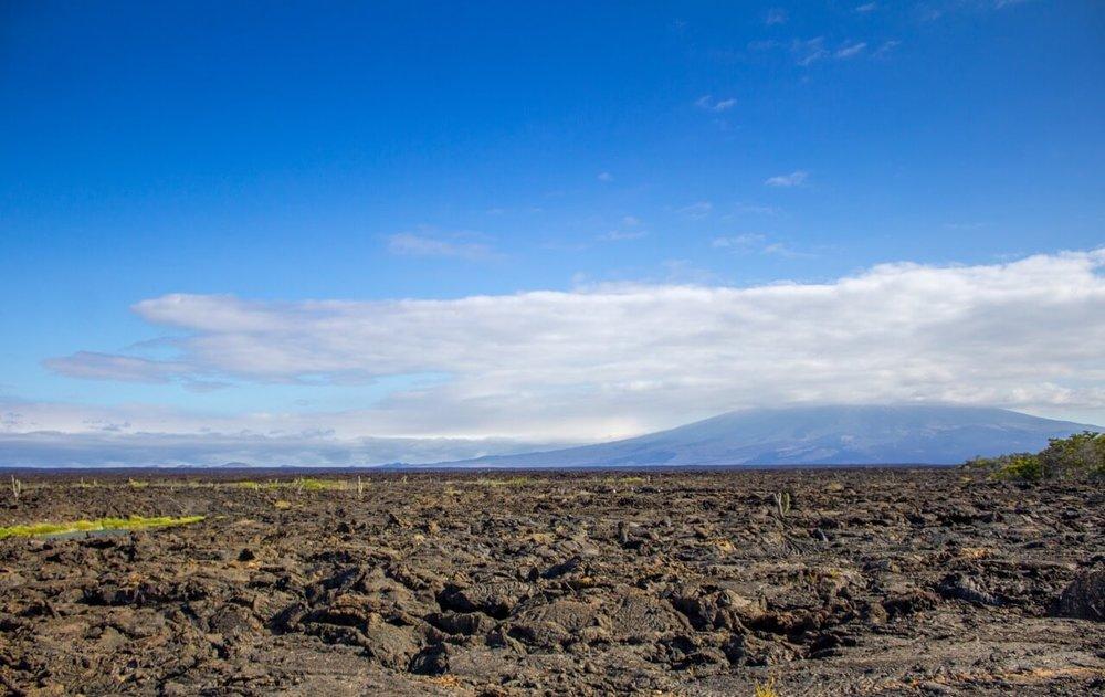 Galapagos Islands Trip