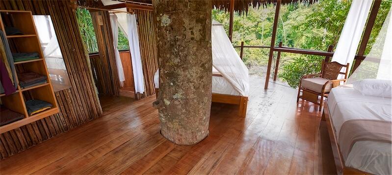 Treehouse10-2-Big.jpg