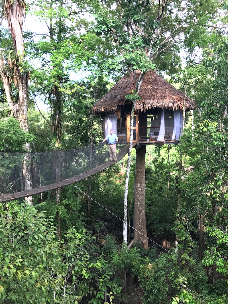 Treehouse lodge and Delfin I Amazon Cruise
