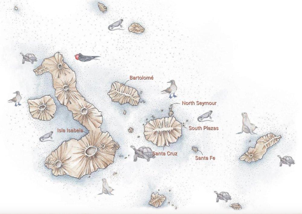 Galapagos Safari Camp Itineraries