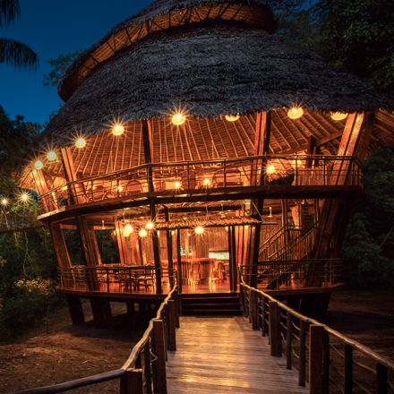 Copy of Amazon Jungle Lodge