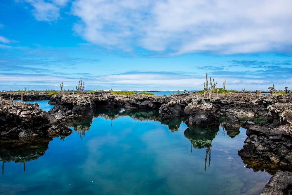 Wetland of Isabela Island
