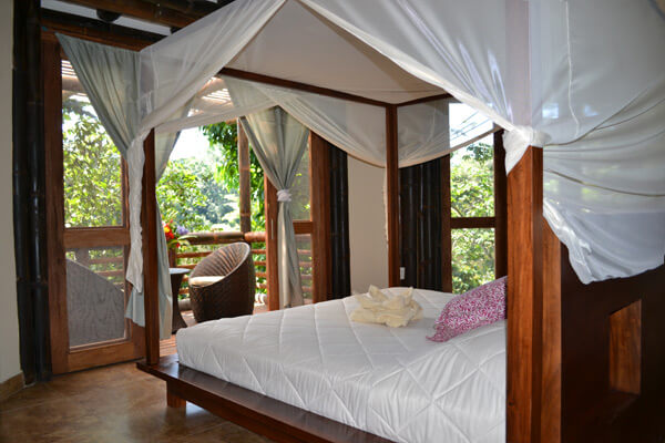 jungle eco lodge