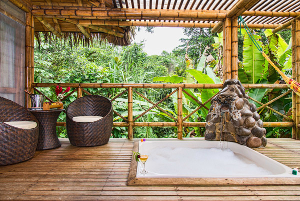 jungle lodge la selva