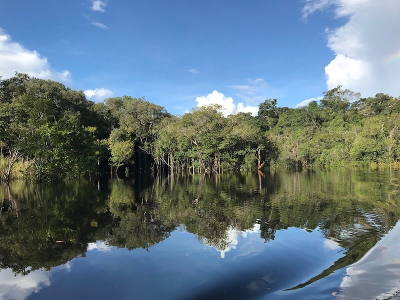 Amazon Rainforest Cruise