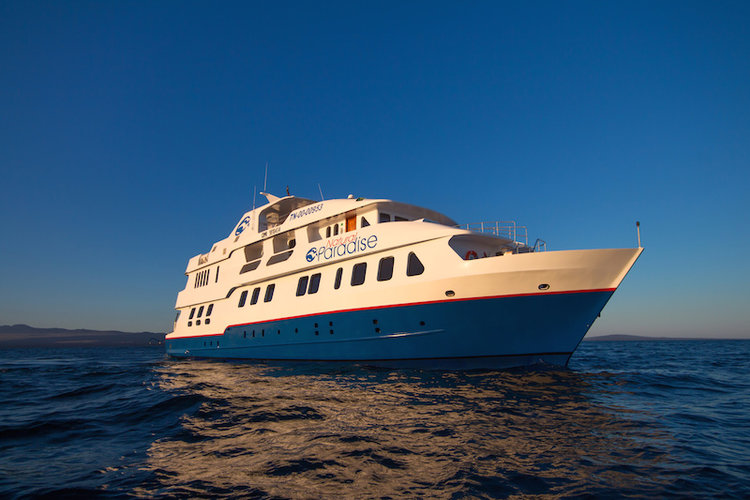 Incredible Galapagos Cruise Offers aboard a range of vessels including the aptly named Natural Paradise Yacht