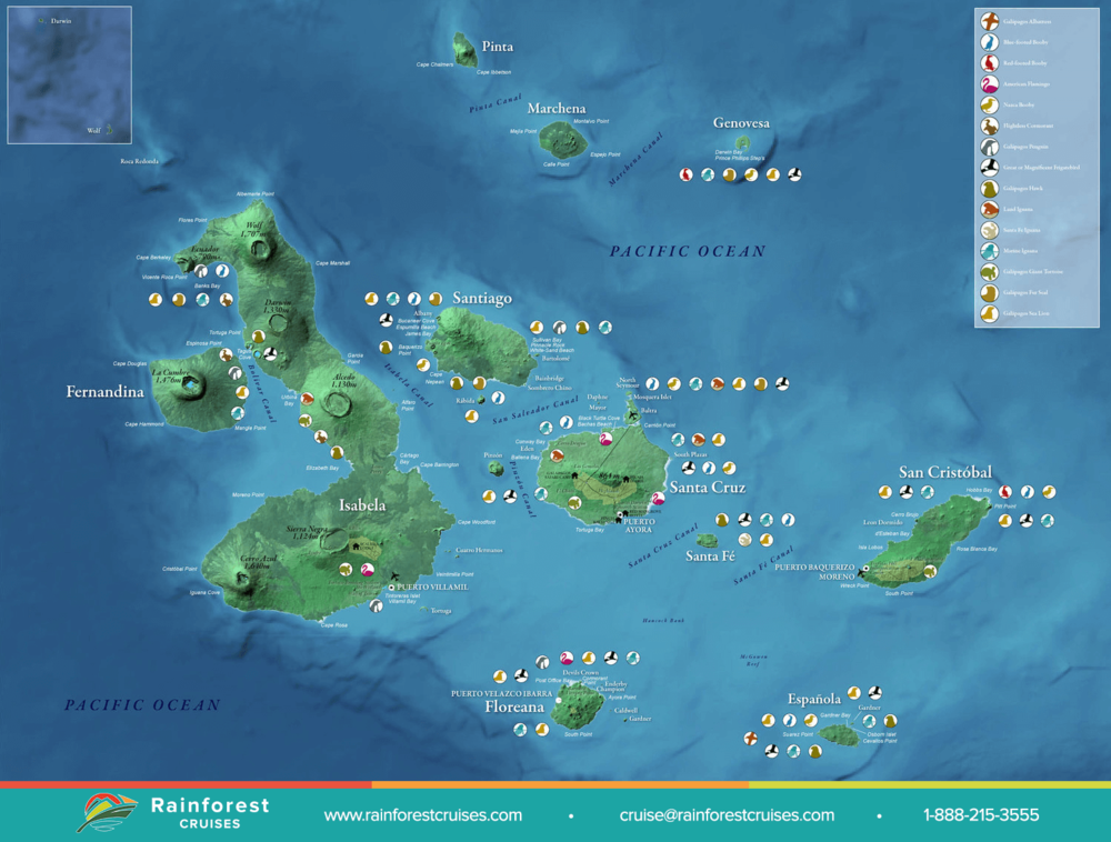 Galapagos Island Map Galapagos Map | Rainforest Cruises Galapagos Island Map