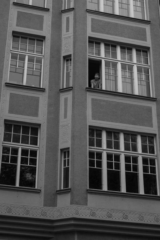 Curious Window