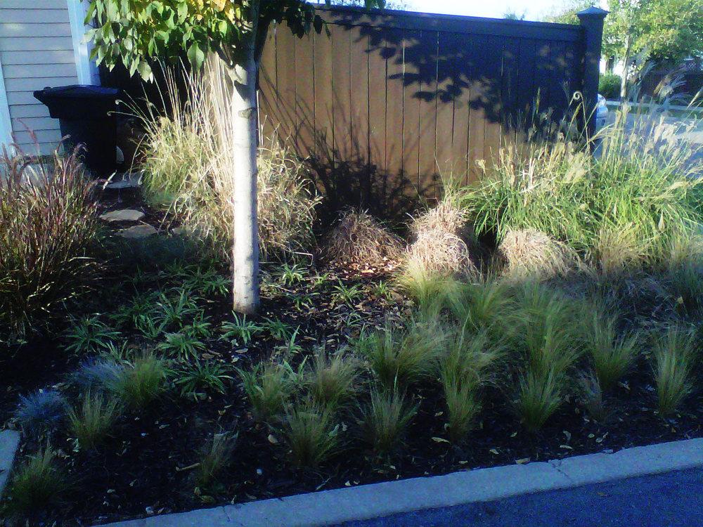Justin Stelter Landscape Gardening - Modern Suburban Landscaping - 12591725363_b68c502b7d_o.jpg
