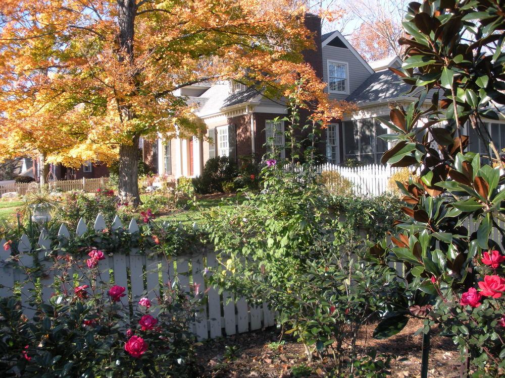 Justin Stelter Landscape Gardening - Cottage Garden - 4148864165_8fc20ea954_o.jpg