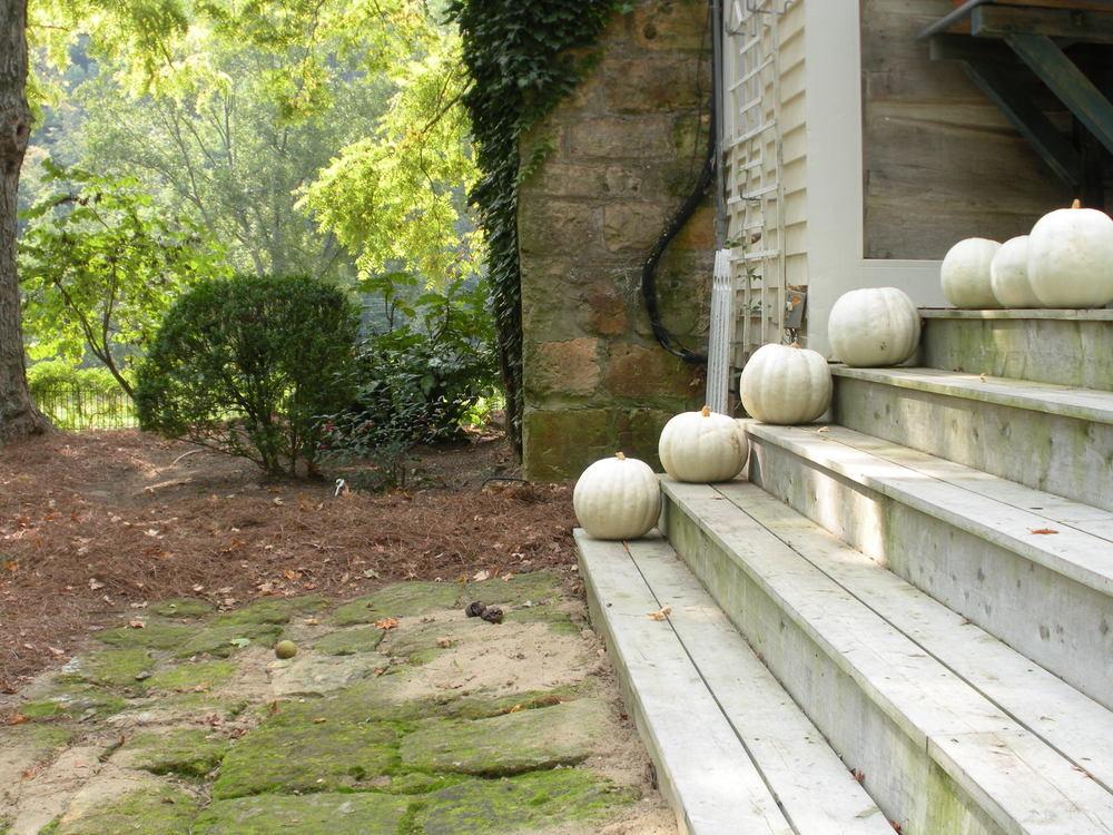 Justin Stelter Landscape Gardening - Seasonal Decorations - 12465927944_657b1eb10b_o.jpg