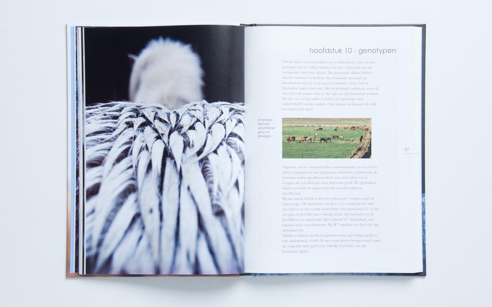 boek-slide-4.jpg