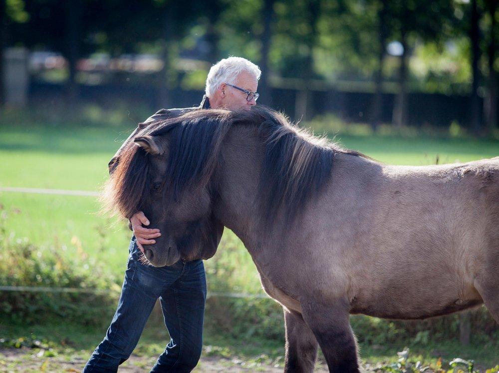Paardadvies-Tessa-Denn-paarden-coaching-Myra-Wippler-3.jpg
