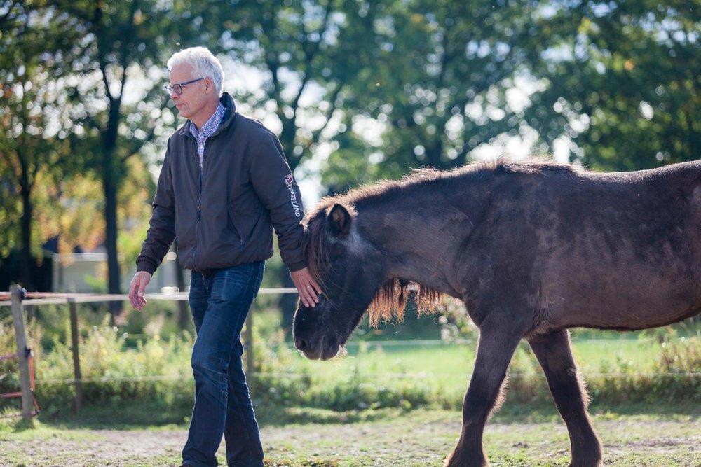 Paardadvies-Tessa-Denn-paarden-coaching-Myra-Wippler-6.jpg